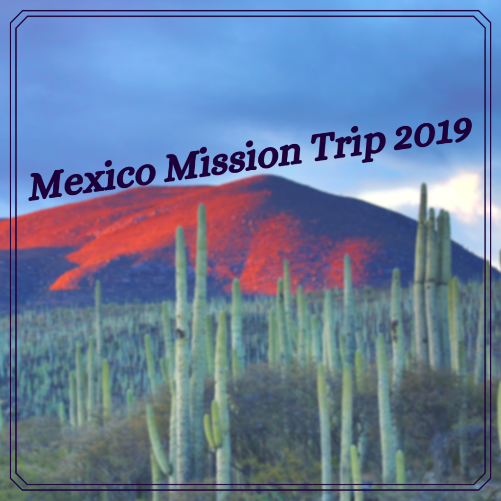 Mexico Mission Trip 2019