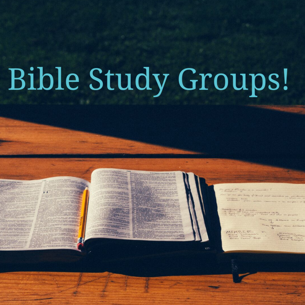 Elevation's Bible Study Groups